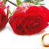 دفتر ثبت ازدواج موقت در تهران و مشهد