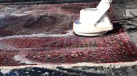 قالیشویی امیرآباد