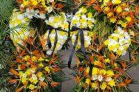 سینا گل در رشت